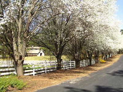 Sunnybrook Farms Equestirian Community 30004 (6)