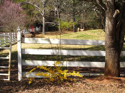 Sunnybrook Farms Equestirian Community 30004 (12)