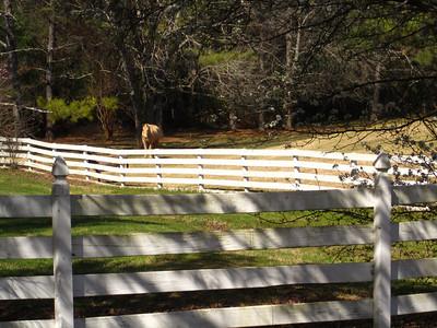 Sunnybrook Farms Equestirian Community 30004 (7)