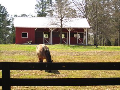 Sunnybrook Farms Equestirian Community 30004 (23)
