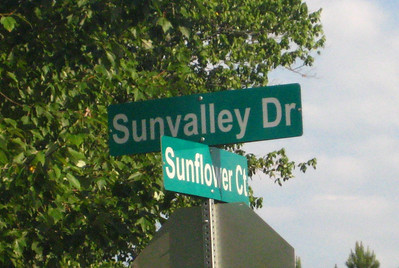 Sunvalley Neighborhood Of Homes Roswell GA (4)