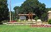 Taglewood Preserve Milton GA Community (1)