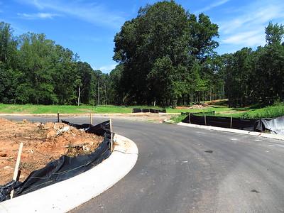 Taglewood Preserve Milton GA Community (8)