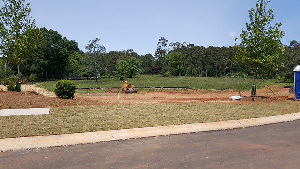 Milton GA New Homes Tanglewood Preserve (3)
