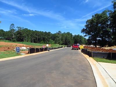 Taglewood Preserve Milton GA Community (3)