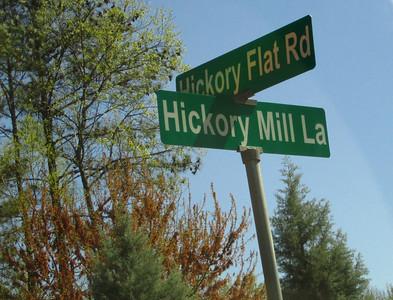 The Estates Of Hickory Mill Milton GA (2)