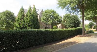 The Hayfield Milton Georgia Estate Community (5)