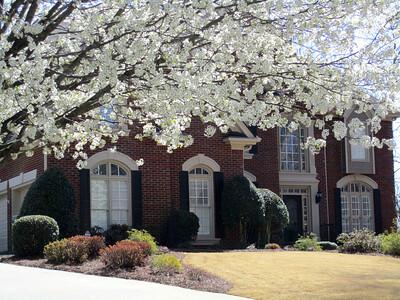 The Hermitage Milton GA In Spring 2011 (16)