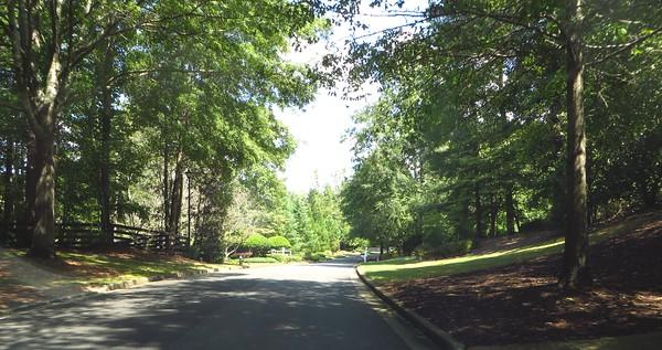 The Lake At North Valley Milton Georgia Subdivision (15)
