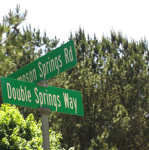 Thompson Springs Milton Georgia (10)