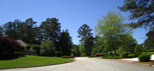 Thompson Springs Milton Georgia (16)