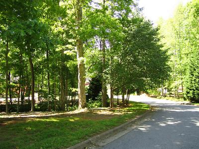 Thompson Springs Milton Georgia (7)
