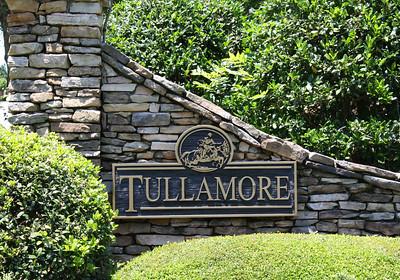 Tullamore Estates Milton GA (7)