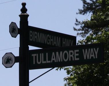 Tullamore Estates Milton GA (11)