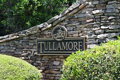 Tullamore Estates Milton GA (14)