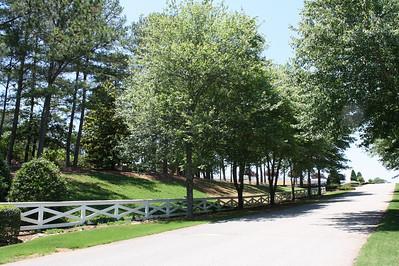 Tullamore Estates Milton GA (13)