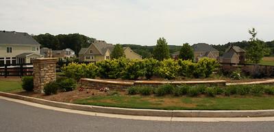 Milton GA Valmont Neighborhood Of Homes (23)