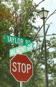 Milton GA Valmont Neighborhood Of Homes (20)