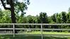 Walton Creek Farms Landrum Road Milton Georgia (8)