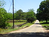 Walton Creek Farms Landrum Road Milton Georgia (18)