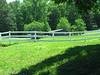 Walton Creek Farms Landrum Road Milton Georgia (20)