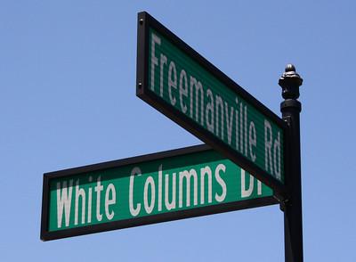 White Columns-Milton Georgia Estate Community (3)