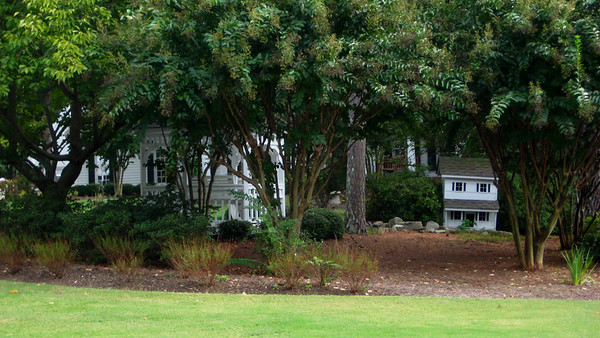 Wood Valley Homes Milton Georgia Neighborhood (22)