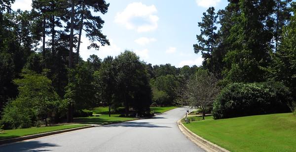 Wood Valley Milton GA Subdivision (6)