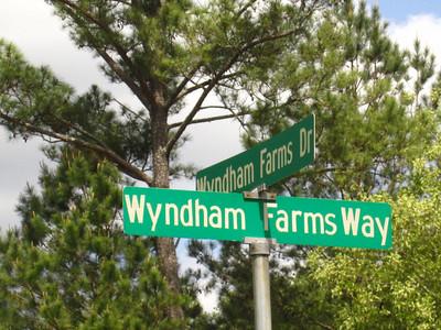 Wyndham Farms Milton GA (16)
