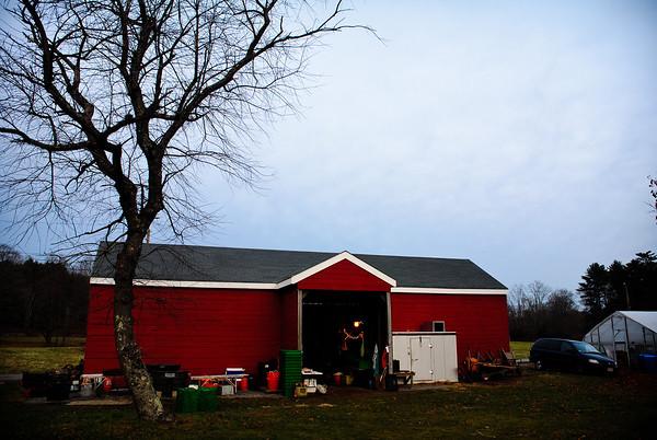 MILTON112211 BROOKWOOD FARM