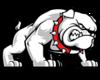 Bulldog Cut Out