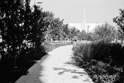 Milwaukee Cityscape on Black and White 35mm Film Photograph 144