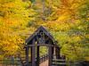 Seven Bridges Trail in Fall