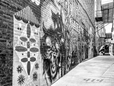 3.16.2018 Black Cat Alley in Black & White