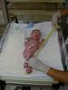 Measuring Mimi's leg 2