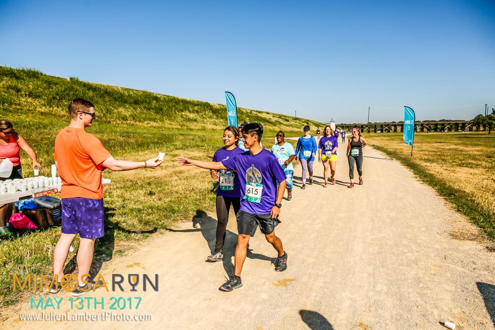 Mimosa Run_2017-3018