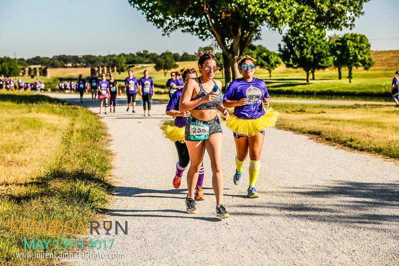 Mimosa Run_2017-2808