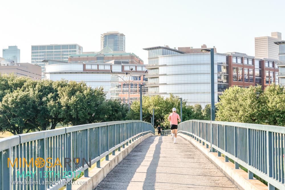 Mimosa Run_2017-1005