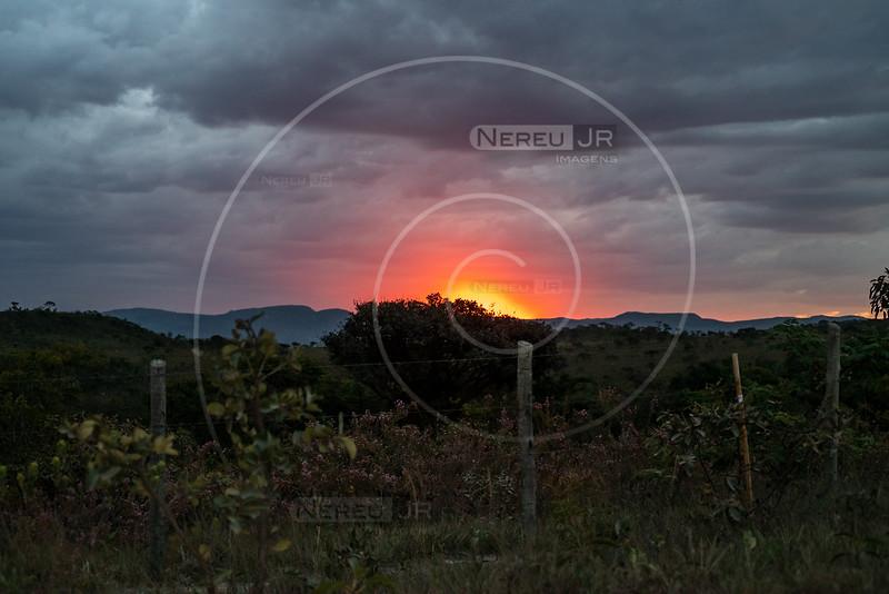 Nereu Jr Imagens