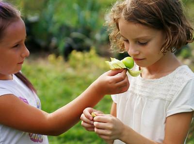 Mindful Gardening. 092916