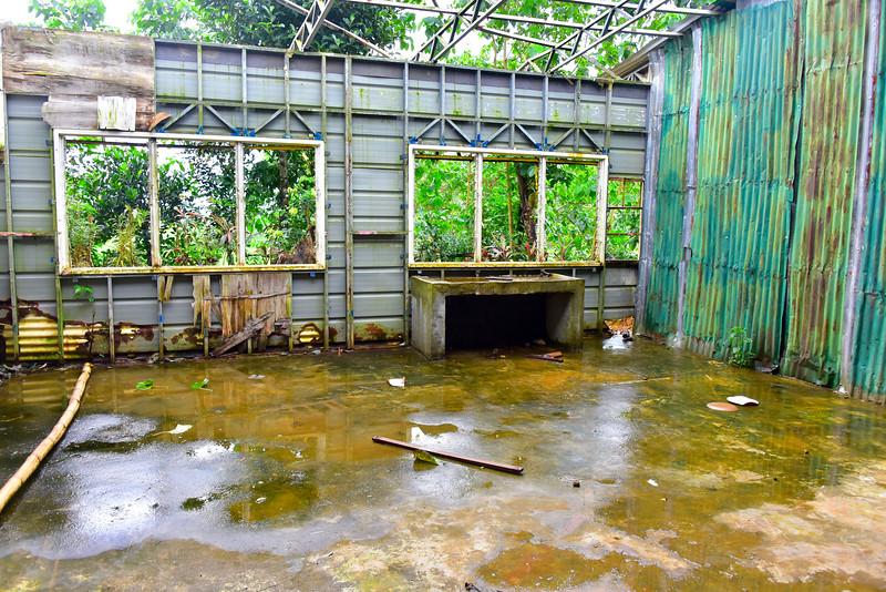 Typhoon Damage at School House
