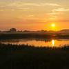 Soloppgang/ Sunrise<br /> Tryggelev Nor, Langeland, Danmark 18.7.2014<br /> Canon EOS 5D Mark II + EF 17 - 40 mm L @ 40 mm