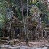 Ta Prohm tempel<br /> Angkor, Siem Reap, Kambodja 15.1.2020<br /> Canon 5D Mark IV + EF 50mm f/1.4 USM