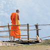 Buddhistmunk<br /> Doi Ang Khang, Thailand 8.2.2018<br /> Canon 7D Mark II + Tamron 150 - 600 mm 5,0 - 6,3 G2