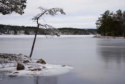 Skumsjøen 25/11/2018   --- Foto: Jonny Isaksen
