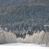 Biri  03/02/2013     --- Foto: Jonny Isaksen