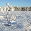 Redalssetermyra 23/12/2007      --- Foto: Jonny Isaksen