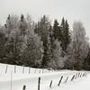 Biri 06/01/2007   --- Foto: Jonny Isaksen