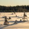 Biri / Grindlirunden 08/01/2012   --- Foto: Jonny Isaksen
