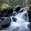 Biri / Grindlia 05/11/2010   --- Foto: Jonny Isaksen